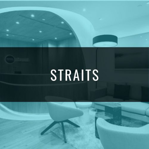 STRAITS EXECUTIVE HEALTH SCREENING PACKAGE